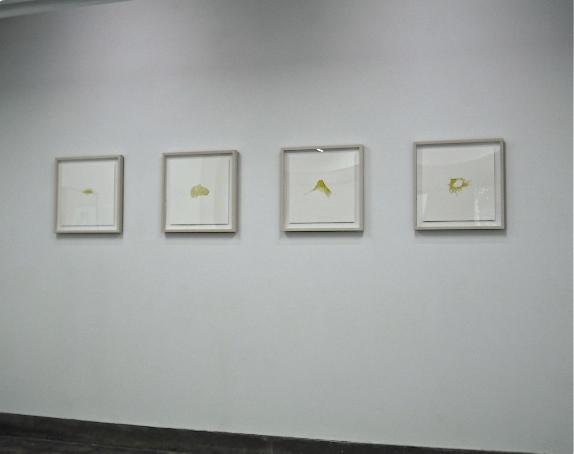 東美貴子_08.JPG